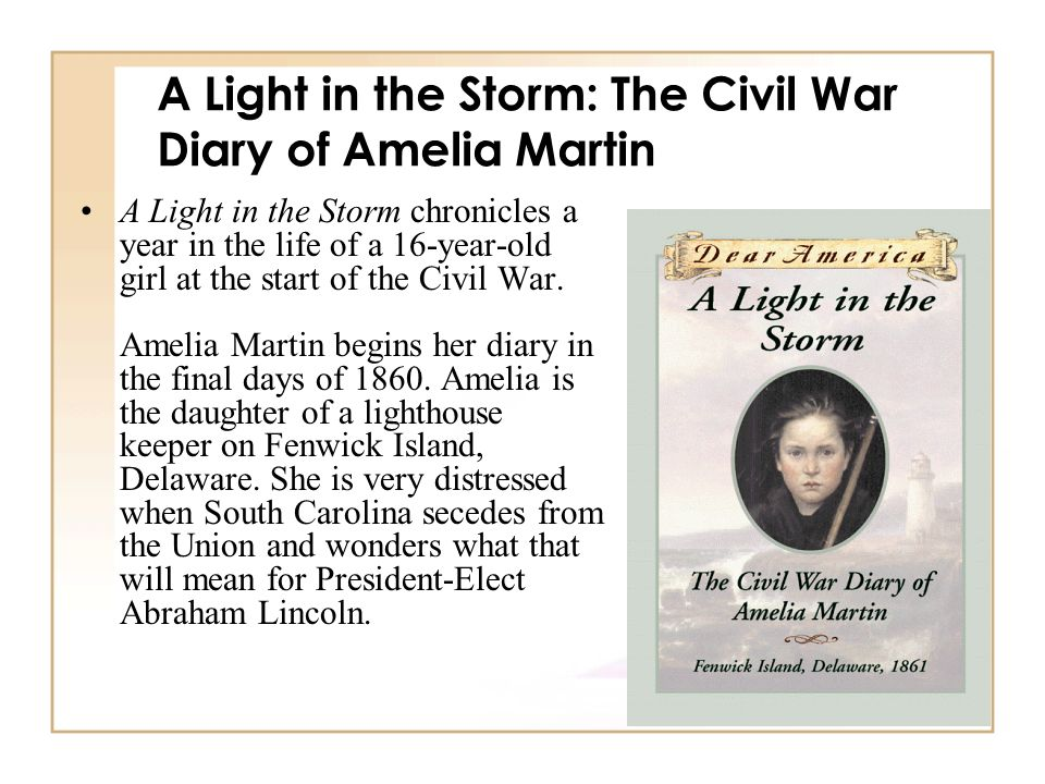 A Light in the Storm: The Civil War Diary of Amelia Martin A Light in the Storm chronicles a year in the life of a 16-year-old girl at the start of th