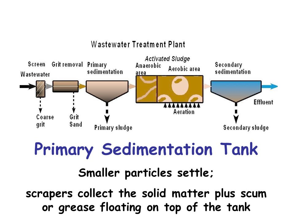 Primary Sedimentation Tank Smaller particles settle; scrapers collect the solid matter plus scum or grease floating on top of the tank