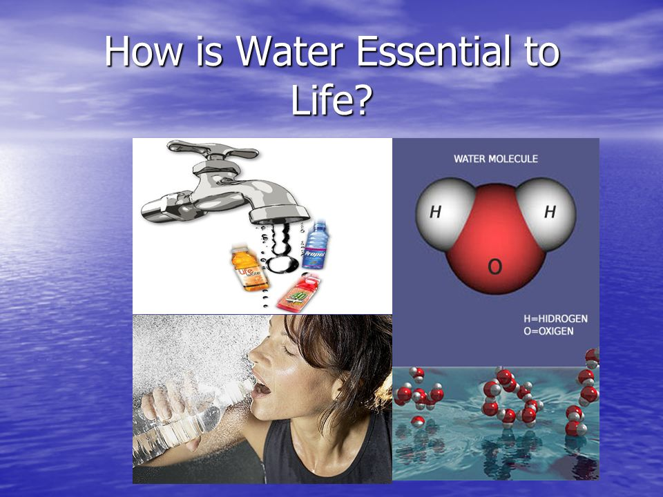 How is Water Essential to Life