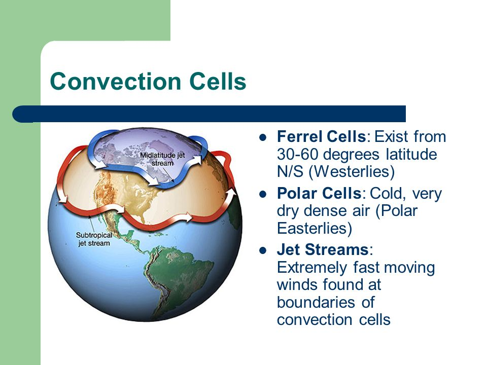 Convection Cells Ferrel Cells: Exist from 30-60 degrees latitude N/S (Westerlies) Polar Cells: Cold, very dry dense air (Polar Easterlies) Jet Streams