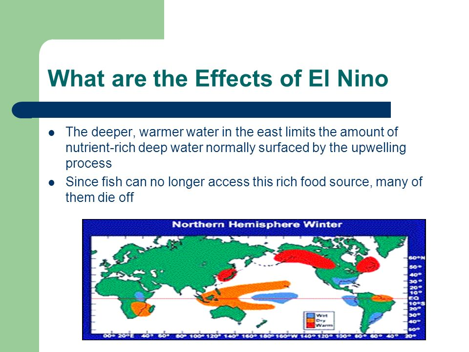 What are the Effects of El Nino The deeper, warmer water in the east limits the amount of nutrient-rich deep water normally surfaced by the upwelling