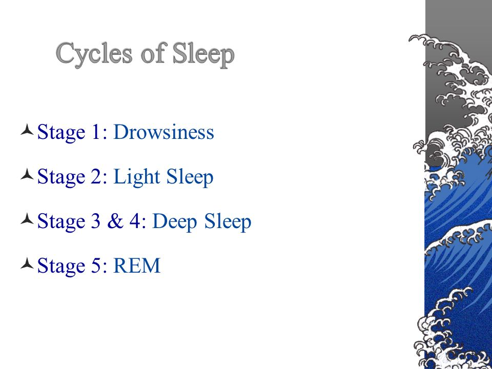 Stage 1: Drowsiness Stage 2: Light Sleep Stage 3 & 4: Deep Sleep Stage 5: REM