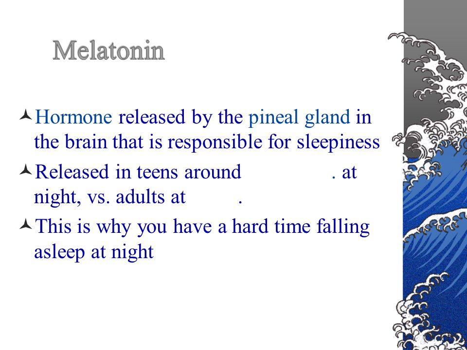 Hormone released by the pineal gland in the brain that is responsible for sleepiness Released in teens around 10:45 p.m.