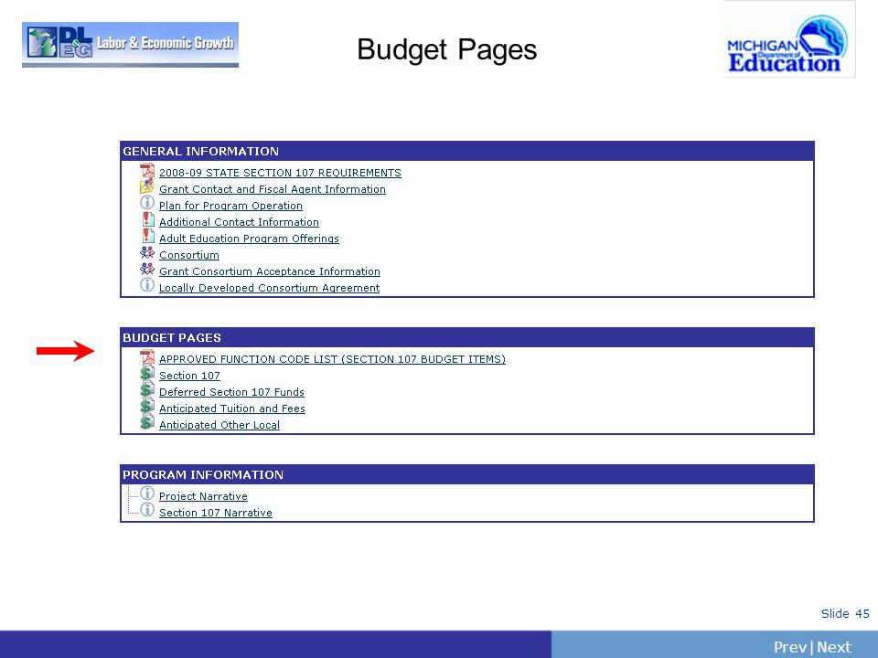 PrevNext   Slide 45 Budget Pages