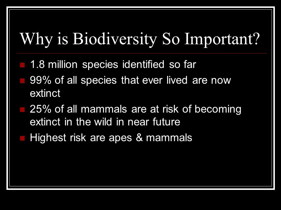 Why is Biodiversity So Important? 1.8 million species identified so far 99% of all species that ever lived are now extinct 25% of all mammals are at r