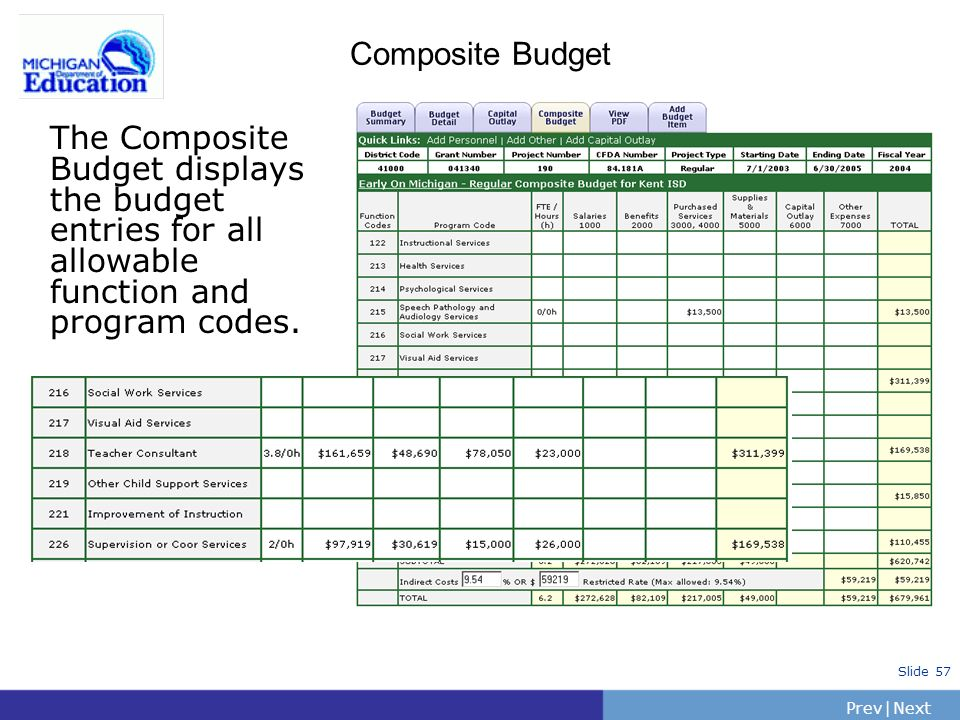 PrevNext | Slide 58 Composite Budget IFER will display the most recent budget entries for the grant.