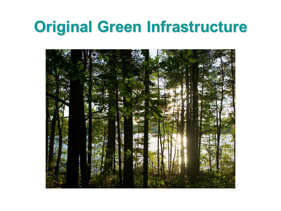 Original Green Infrastructure
