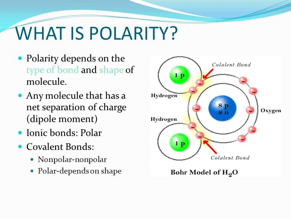 WHAT IS POLARITY? type of bondshape Polarity depends on the type of bond and shape of molecule. Any molecule that has a net separation of charge (dipo