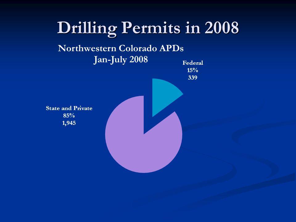 Drilling Permits in 2008