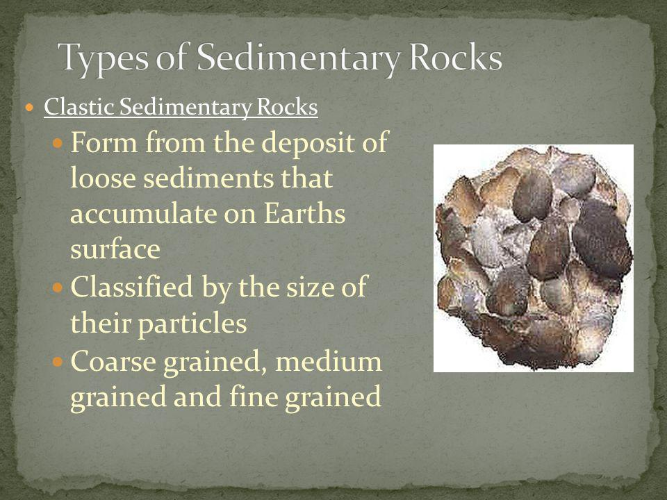 Clastic Sedimentary Rocks Form from the deposit of loose sediments that accumulate on Earths surface Classified by the size of their particles Coarse