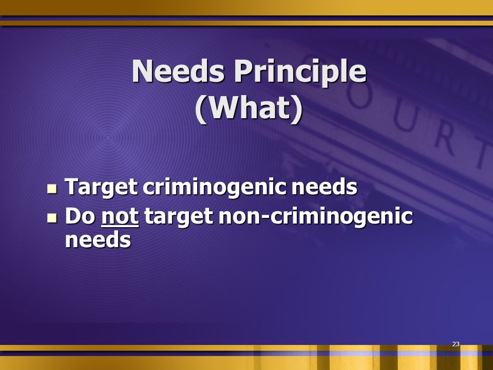 23 Needs Principle (What) Target criminogenic needs Target criminogenic needs Do not target non-criminogenic needs Do not target non-criminogenic needs
