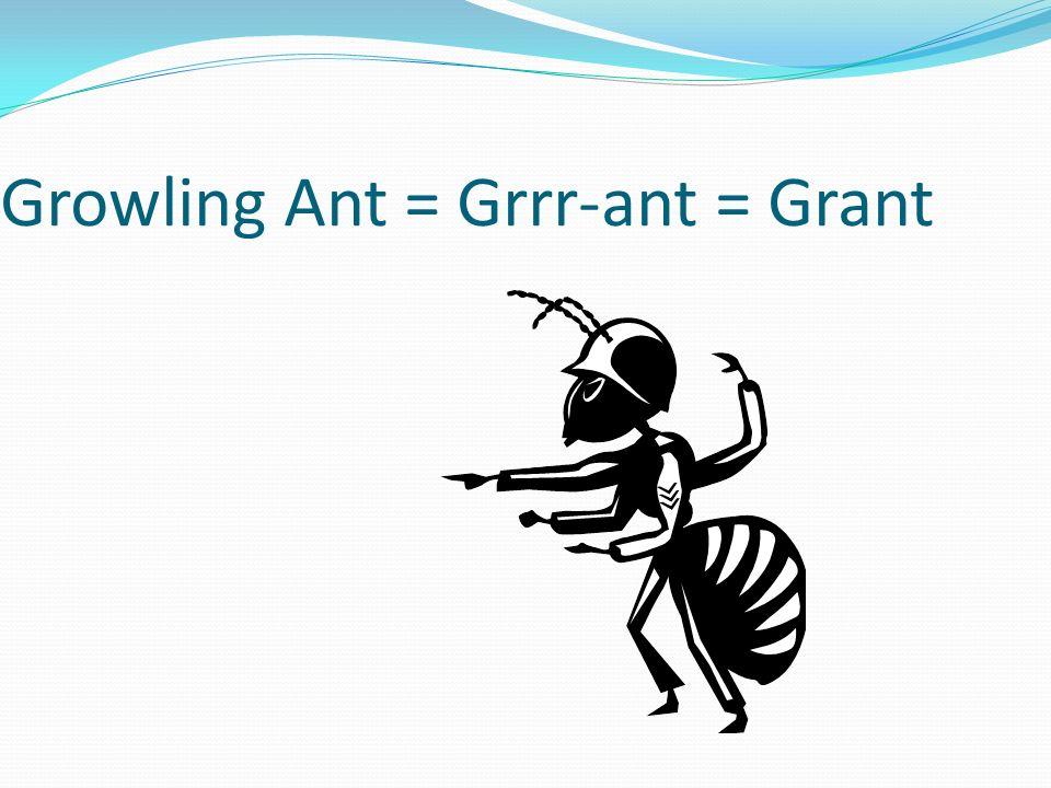 Growling Ant = Grrr-ant = Grant