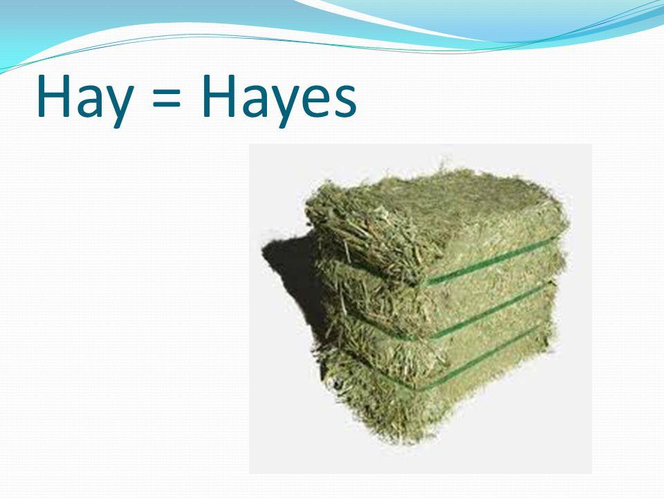 Hay = Hayes