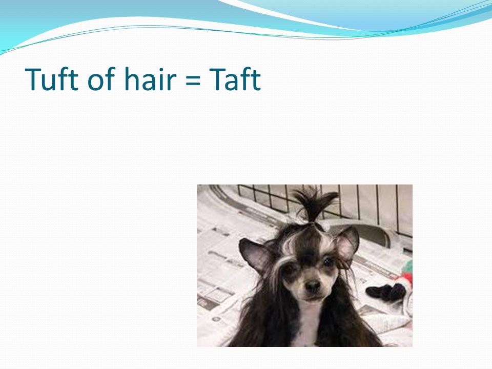 Tuft of hair = Taft