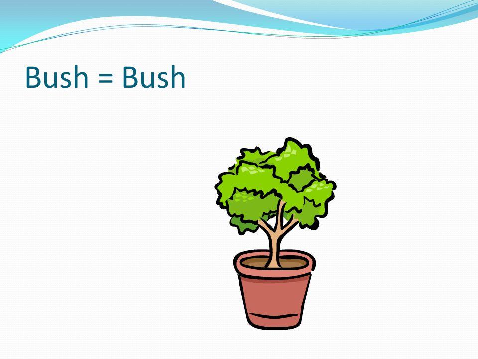 Bush = Bush