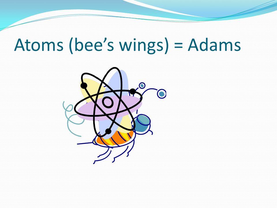 Atoms (bees wings) = Adams