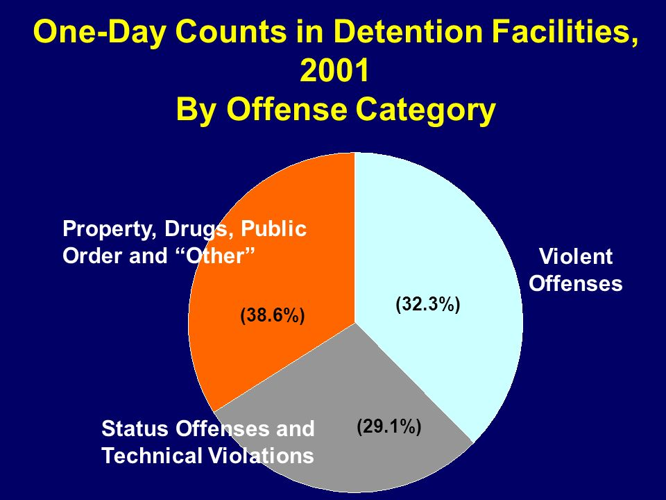 One-Day Counts in Detention Facilities, 2001 By Offense Category Property, Drugs, Public Order and Other (38.6%) (32.3%) (29.1%) Violent Offenses Stat