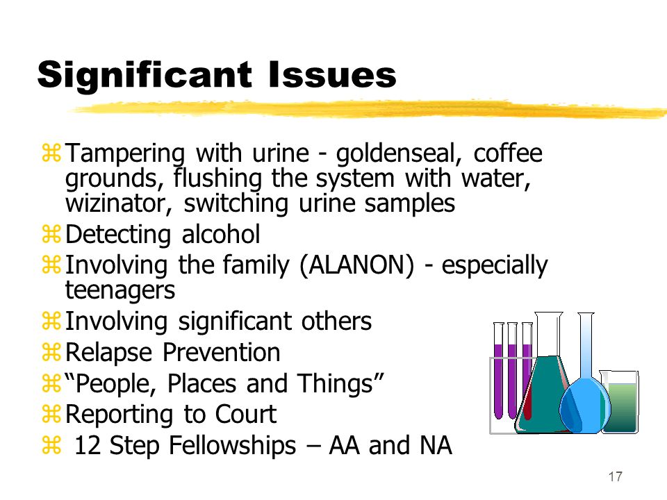 17 Significant Issues zTampering with urine - goldenseal, coffee grounds, flushing the system with water, wizinator, switching urine samples zDetectin