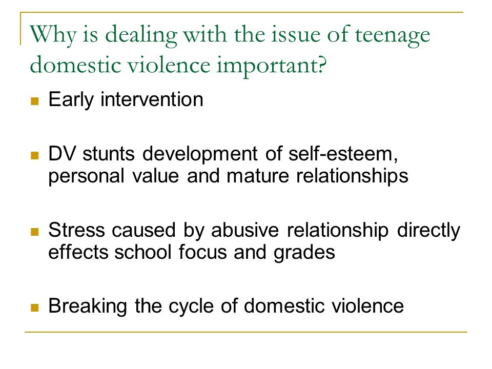 Why is dealing with the issue of teenage domestic violence important.