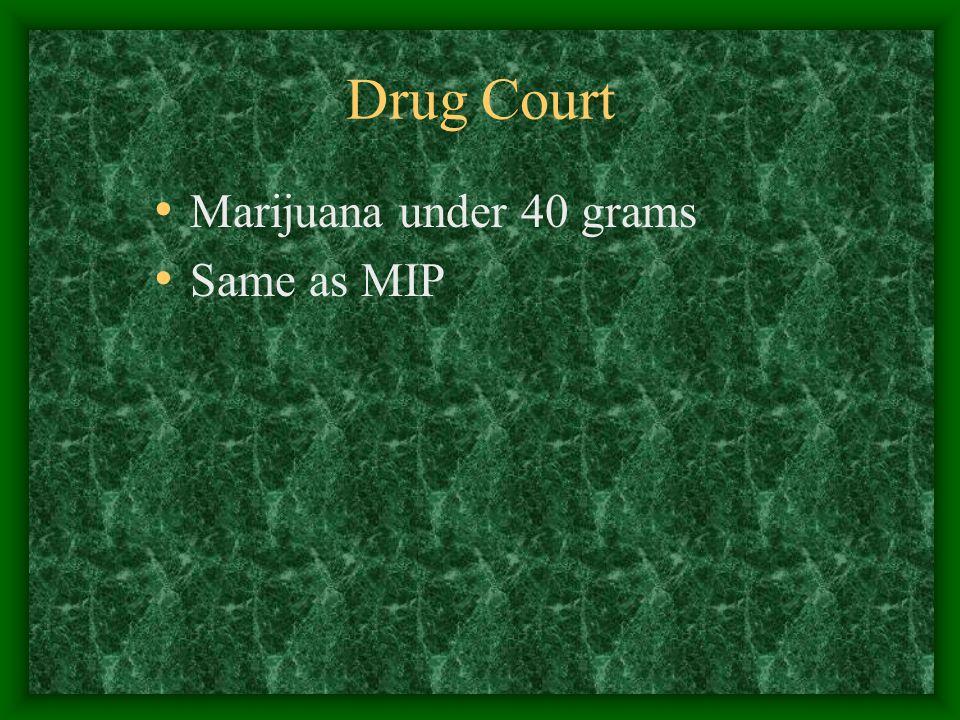 Drug Court Marijuana under 40 grams Same as MIP