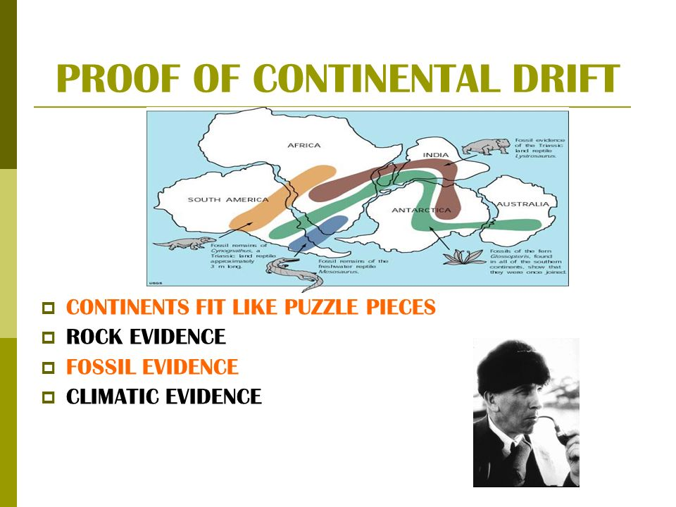 PROOF OF CONTINENTAL DRIFT CONTINENTS FIT LIKE PUZZLE PIECES ROCK EVIDENCE FOSSIL EVIDENCE CLIMATIC EVIDENCE