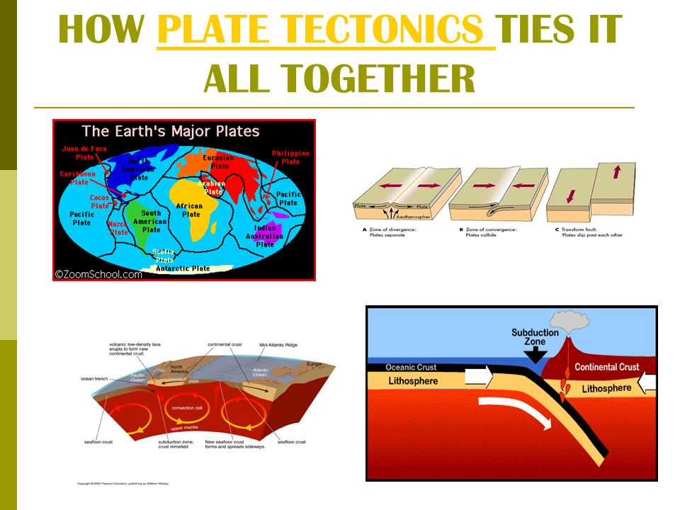 HOW PLATE TECTONICS TIES IT ALL TOGETHERPLATE TECTONICS