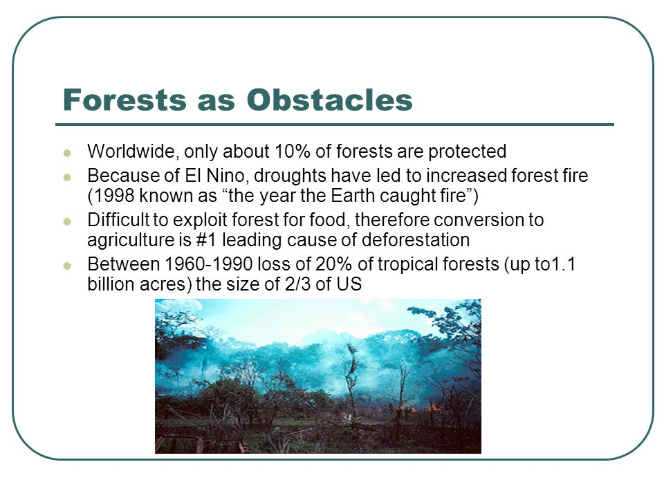 Forests as Obstacles Worldwide, only about 10% of forests are protected Because of El Nino, droughts have led to increased forest fire (1998 known as