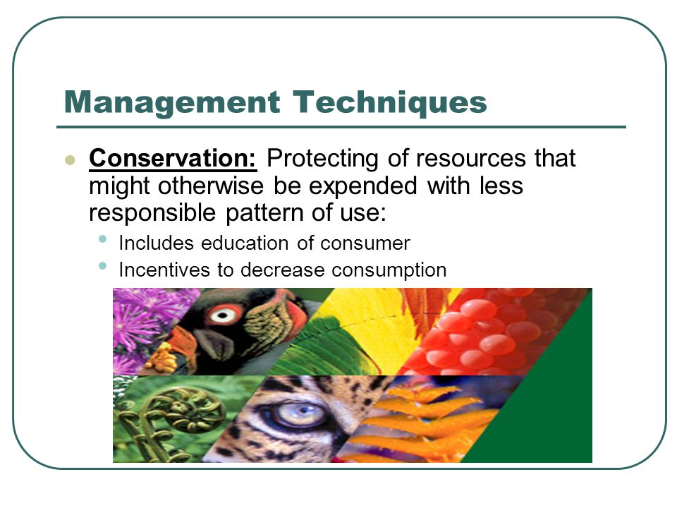 Management Techniques Conservation: Protecting of resources that might otherwise be expended with less responsible pattern of use: Includes education