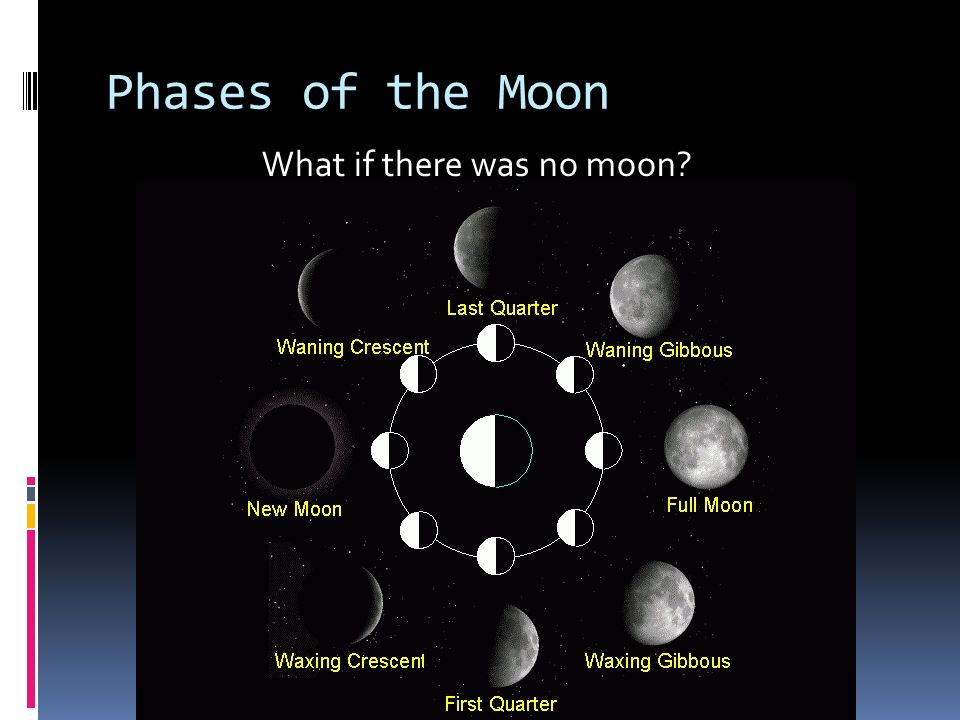 Phases of the Moon What if there was no moon?