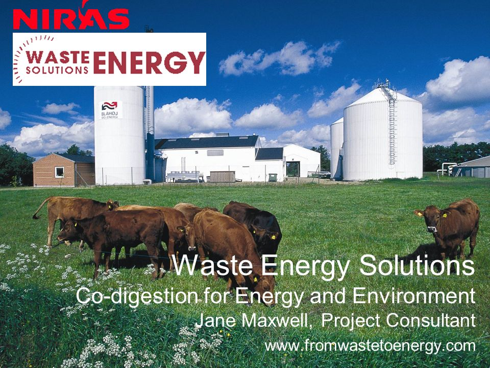 –Importing milk uses fossil fuels –Using fossil fuels increases GHGs –Dairy Manure very necessary for co-digestion – this will help clean up wastes from many sources including wastes from other renewables (stillage from ethanol, glycerine from biodiesel) –Dairies can be important contributors to renewable energy –Florida dairies keep jobs and money in Florida Why FLORIDA dairy farms are important for meeting GHG reductions and RPS