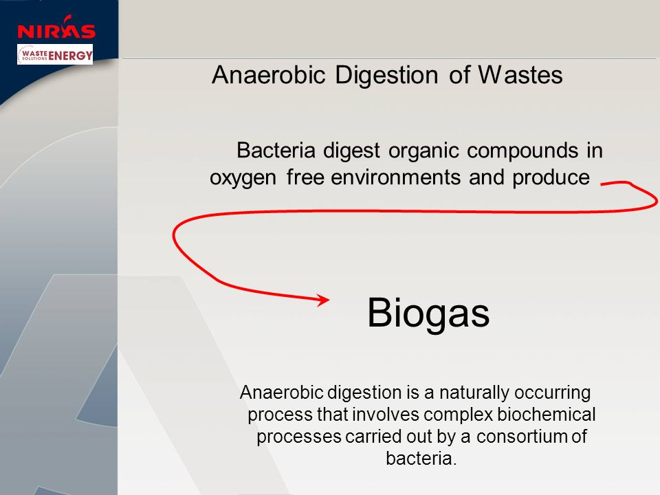 Biogas is Up to 65% methane 35% to 40% Carbon Dioxide Trace amounts of H 2, NH 3, and H 2 S.