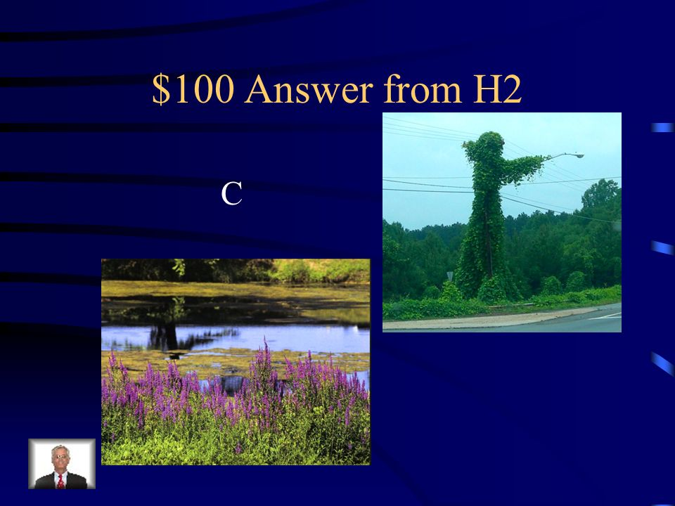 $100 Question from H2 Which of the following is an invasive plant? a.Kudzu b.Purple Loosestrife c.Both a and b