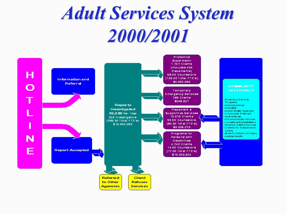 Adult Services System 2000/2001