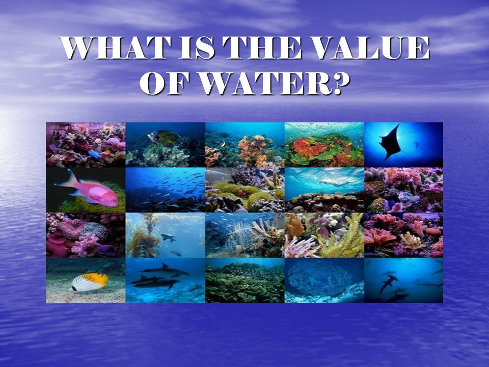 WHAT IS THE VALUE OF WATER?
