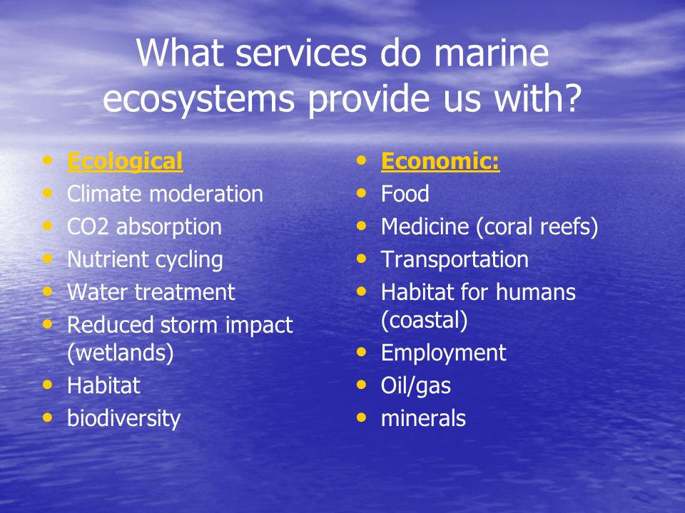 What services do marine ecosystems provide us with? Ecological Climate moderation CO2 absorption Nutrient cycling Water treatment Reduced storm impact
