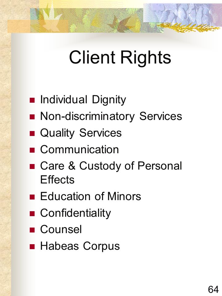 64 Client Rights Individual Dignity Non-discriminatory Services Quality Services Communication Care & Custody of Personal Effects Education of Minors