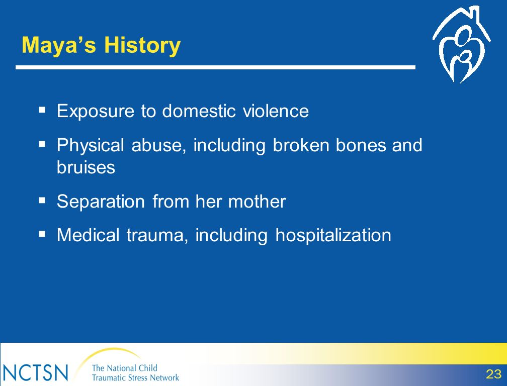 Exposure to domestic violence Physical abuse, including broken bones and bruises Separation from her mother Medical trauma, including hospitalization Mayas History 23