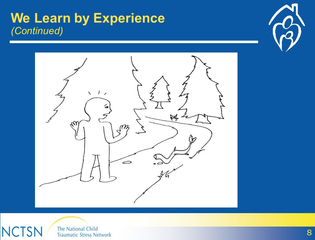 8 We Learn by Experience (Continued)
