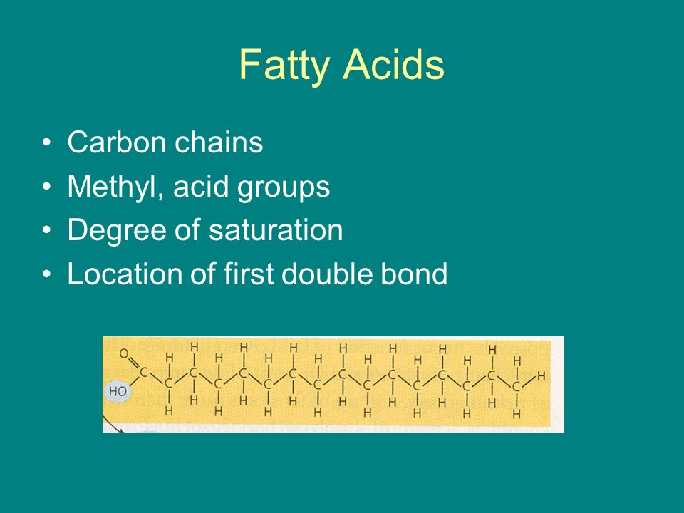 Fatty Acids Carbon chains Methyl, acid groups Degree of saturation Location of first double bond