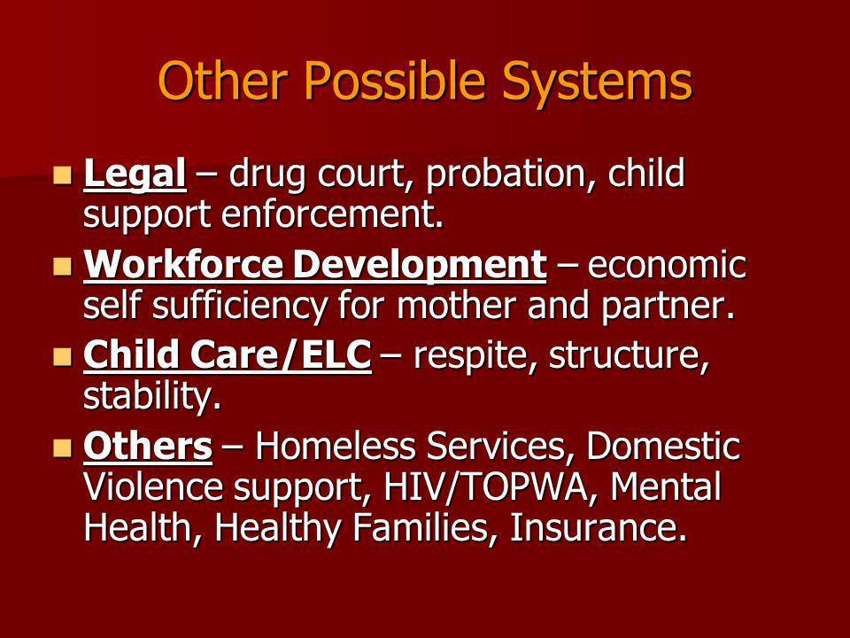 Other Possible Systems Legal – drug court, probation, child support enforcement. Legal – drug court, probation, child support enforcement. Workforce D