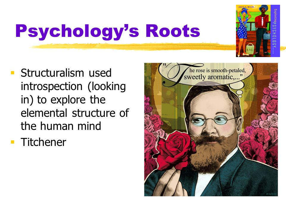 Psychologys Roots Structuralism used introspection (looking in) to explore the elemental structure of the human mind Titchener