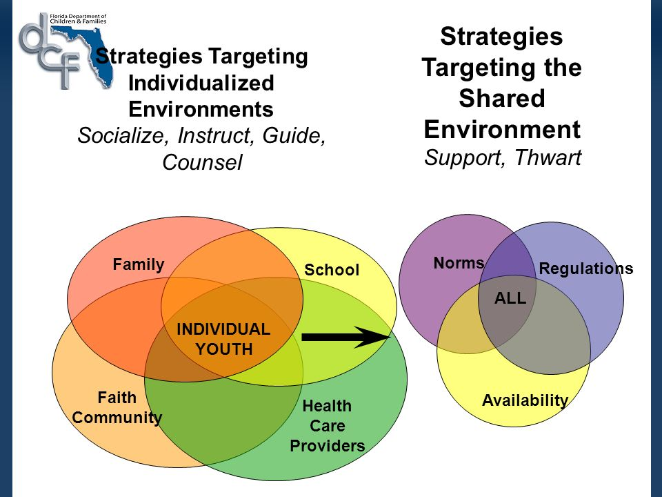 Strategies Targeting Individualized Environments Socialize, Instruct, Guide, Counsel Family School Health Care Providers INDIVIDUAL YOUTH Faith Community Strategies Targeting the Shared Environment Support, Thwart Availability Regulations Norms ALL