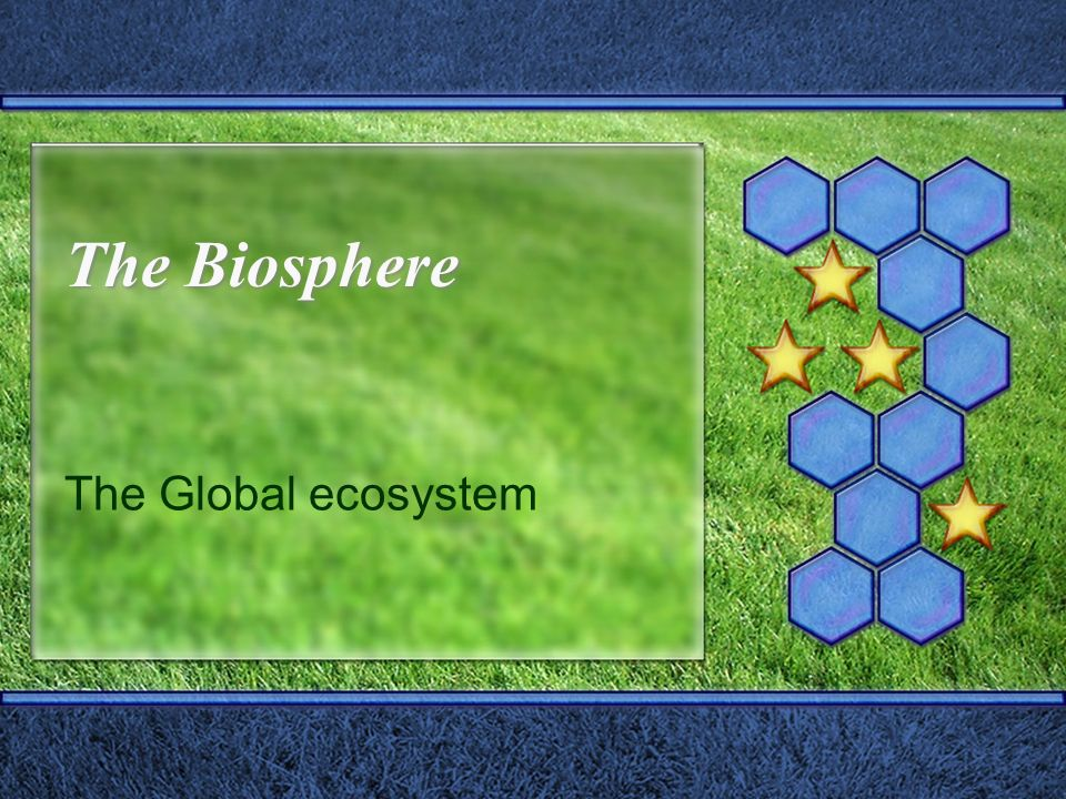 The Biosphere The Global ecosystem