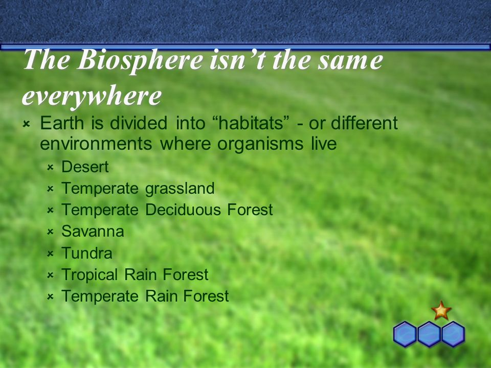 The Biosphere isnt the same everywhere Earth is divided into habitats - or different environments where organisms live Desert Temperate grassland Temp