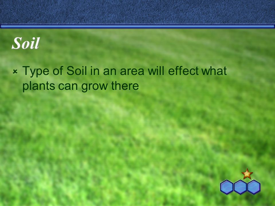 Soil Type of Soil in an area will effect what plants can grow there