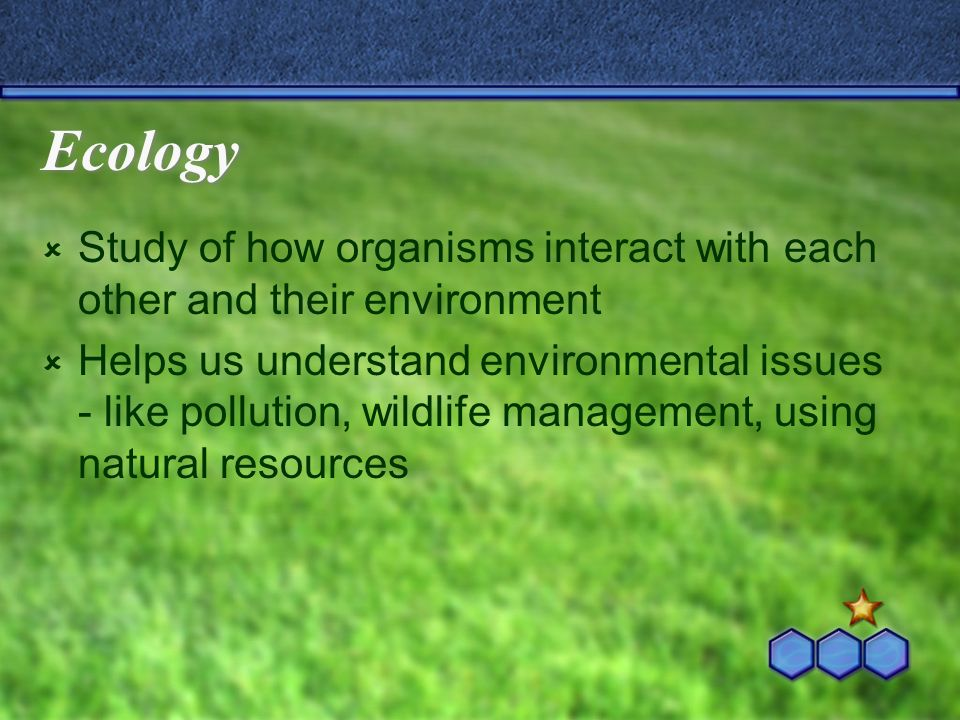 Ecology Study of how organisms interact with each other and their environment Helps us understand environmental issues - like pollution, wildlife management, using natural resources