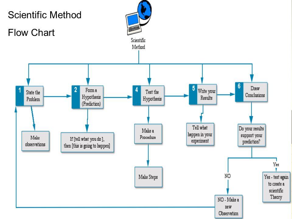 Flow Chart Scientific Method Flow Chart