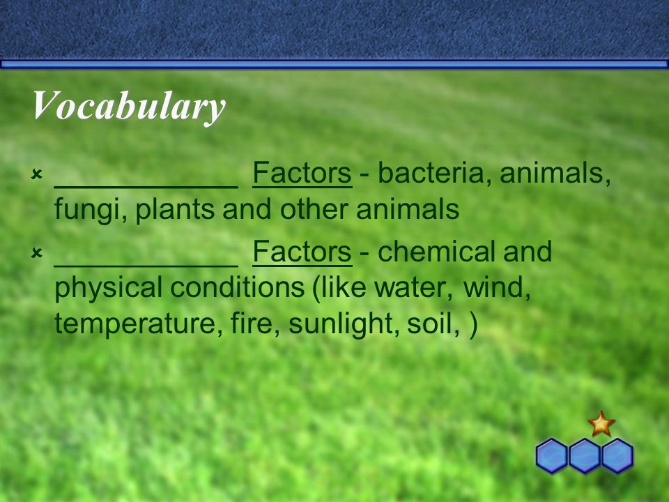 Vocabulary ___________ Factors - bacteria, animals, fungi, plants and other animals ___________ Factors - chemical and physical conditions (like water