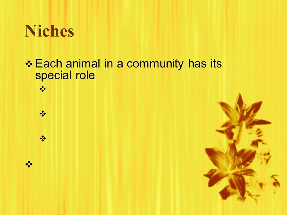 Niches Each animal in a community has its special role Each animal in a community has its special role