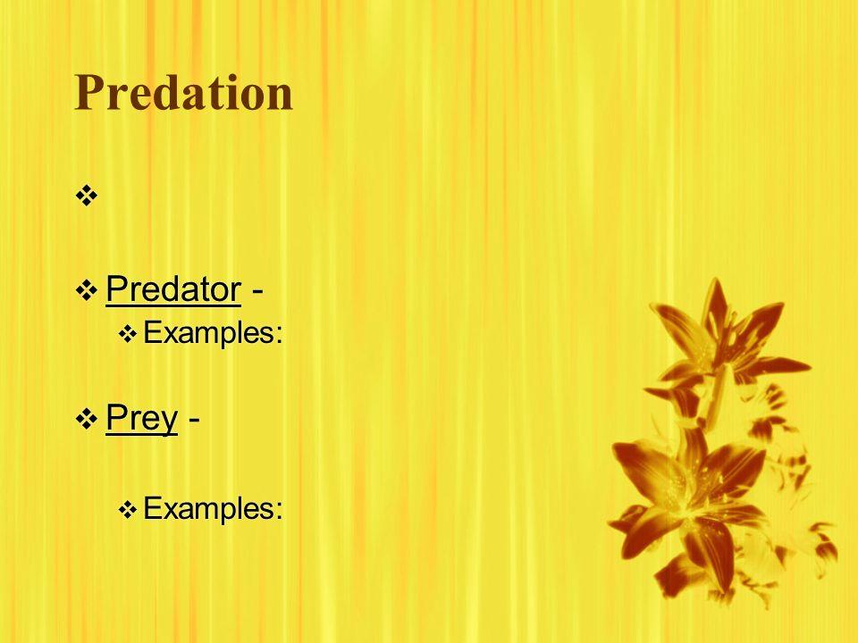Predation Predator - Examples: Prey - Examples: Predator - Examples: Prey - Examples: